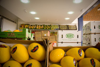 L'Emilia-Romagna e la collaborazione fra territori: Brasile e non solo