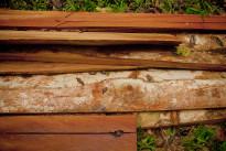 Corso di formazione per artigiani del settore legno in Alto Solimoes