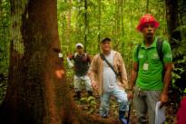Amazzonia,tra sviluppo sostenible e valorizzazione delle risorse naturali